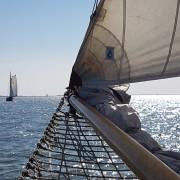 Plattbodenschifffahrt vom SvSE Bild 1