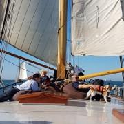 Plattbodenschifffahrt vom SvSE Bild 8